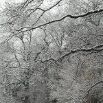 Segnalate eventuali problemi per quanto riguarda la neve