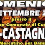 Cuvio – 30 settembre 2018 – Eco-Castagnata
