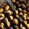 Orino – Il dialetto la nostra lingua, le nostre tradizioni- I castegn
