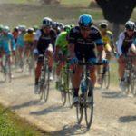 N. 3 grandi campioni di ciclismo di Felice Magnani