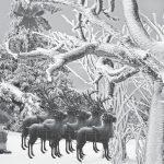 L'ammutinamento delle renne di Babbo Natale di Sara Boldetti