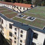 4000 piantine grasse che trasformeranno il tetto dell'ex copertificio Sonnino in un giardino sospeso lungo il fiume Bardello.