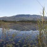 Avviato il progetto della valorizzazione delle sponde e della pista ciclabile del lago di Varese