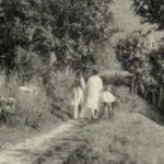 I sentieri della Valcuvia